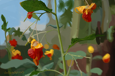 JEWELWEED21a1